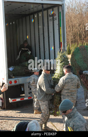 """Twenty members of the New York Army and Air National Guard volunteered their time to help load about 125 donated Christmas trees at Ellms Tree Farm in Charlton, N.Y., in support of their delivery this holiday season as part of """"Trees for Troops."""" The Soldiers, part of the 42nd Infantry Division Headquarters, and Airmen, from the 109th Airlift Wing, were present to show their support of fellow service members currently overseas for the holiday season. The donated trees will be delivered to Fort Bragg, North Carolina. (U.S. National Guard photo by New York Army National Guard Col. Richard Golden - Stock Photo"""