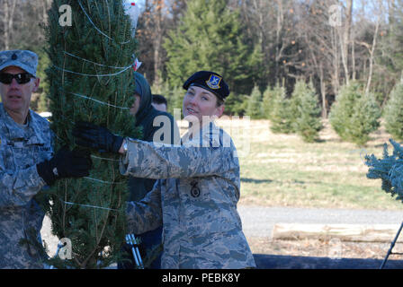 """New York Air National Guard Master Sgt. Kara Tatlock passes a Christmas tree to Army Natiomal Guard Sgt. Maj. David Smiiith to help load Christmas trees bound for military forces at Ellms Tree Farm Nov. 30 as part of the shipment of holiday trees for troops. Twenty members of the New York Army and Air National Guard volunteered their time to help load about 125 donated Christmas Trees at Ellms Tree Farm in Charlton, N.Y. in support of their delivery this holiday season as part of """"Trees for Troops."""" The Soldiers, part of the 42nd Infantry Division Headquarters, and Airmen, from the 109th Airli - Stock Photo"""