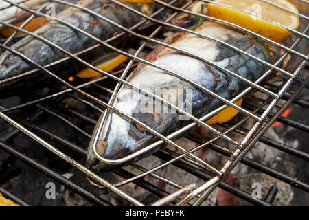 grilling fresh mackerel with lemon on the bbq in the uk - Stock Photo