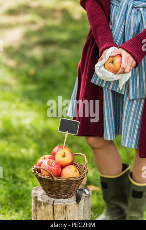 cropped view of young woman selling fresh picked apples in basket with empty tag - Stock Photo