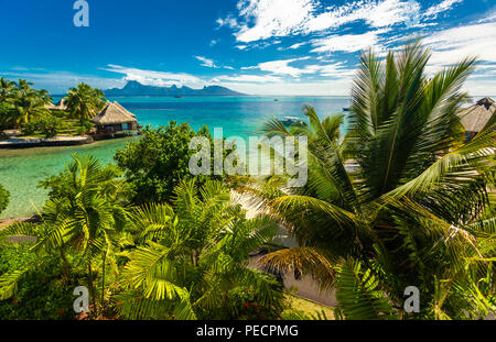 Overwater bungalows with best beach for snorkeling, Tahiti, French Polynesia, Moorea in the background - Stock Photo