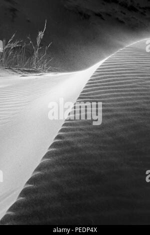 Wind blows across the sands of Elim Dune in the Namib Desert, Namibia - Stock Photo