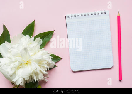 Notepad for text white flowers peony cherry berries on pastel pink background - Stock Photo