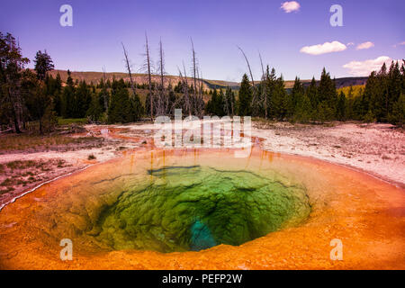 Morning Glory Pool in Yellowstone National Park - Stock Photo