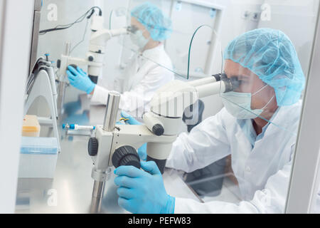 Two lab technicians or scientists working in laboratory - Stock Photo
