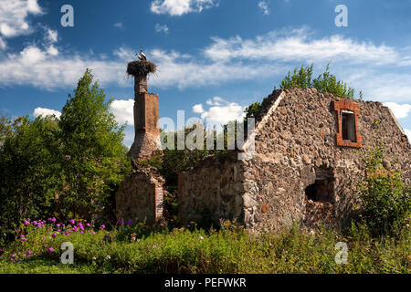 Two stork sitting in the nest as a hope for the best trumpet old ruined house - Stock Photo