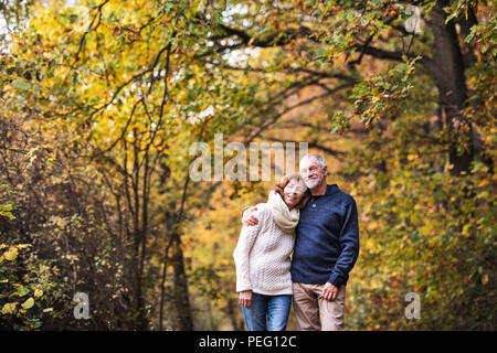 A portrait of a senior couple standing in an autumn nature. Copy space. - Stock Photo