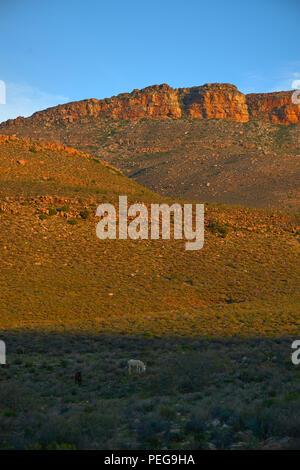 Biedouw Valley from Enjo Nature Farm - Stock Photo
