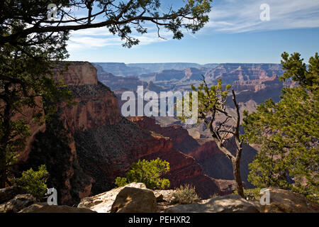 AZ00268-00...ARIZONA - View of the Colorado River from the canyon rim trail near Monument Creek Vista,  located along the Hermit Road in Grand Canyon  - Stock Photo