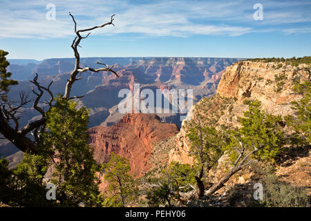 AZ00270-00...ARIZONA - View of the Colorado River from the Rim Trail near The Abyss,  located along the Hermit Road in Grand Canyon National Park. - Stock Photo