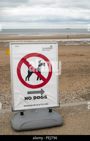 No dogs on beach sign, Seaburn, Sunderland, England, UK - Stock Photo