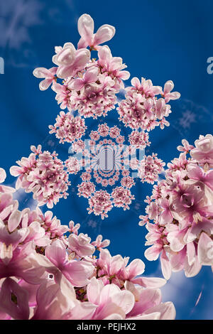Kaleidoscopic Pattern of a Magnolia Tree, based on own Reference Image - Stock Photo