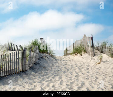 Path leading to beach in The Hamptons, New York, USA. - Stock Photo