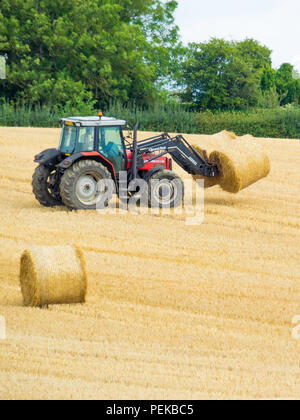 Tractor collecting cylindrical hay bales for transport to storage  North Yorkshire England - Stock Photo