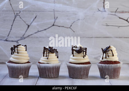 Festive Halloween cupcakes with chocolate spiders in a row on white wooden planks in blue moonlight, spider web background - Stock Photo