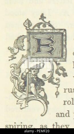 Historic archive Image taken from page 243 of 'Social Distinction; or, Hearts and Homes' - Stock Photo