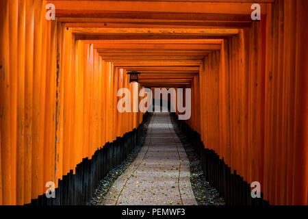 Red Tori Gate at Fushimi Inari Shrine in Kyoto, Japan. - Stock Photo
