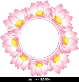 Pink Indian Lotus Banner Card Nelumbo Nuciferasacred Lotus Bean