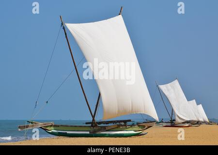 Oruwa fishing boats on Negombo Beach, Sri Lanka - Stock Photo