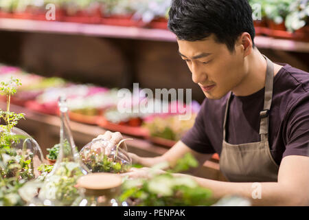 Young man working in plant shop - Stock Photo
