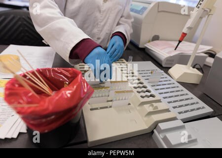 Laboratory technician working in blood bank - Stock Photo