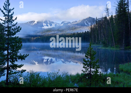 Sylvan Lake in Yellowstone National Park on a misty dawn morning, with ducks swimming in the lake and reflections of mountains. - Stock Photo