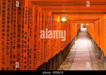 Asia, Japan, Honshu, Kansai Region, Kyoto, Fushimi-Inari Taisha shrine, Lantern hanging between torii gates and Japanese Kanji script written on the t