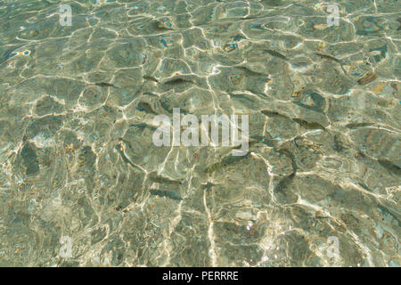 Photo of the amazing crystal clear water, and fishes swimming in the shallow shimmering part of the pristine beach of Rawa Island, near... - Stock Photo