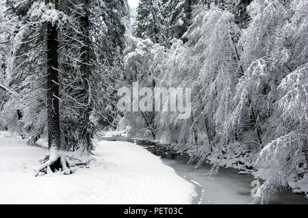 The winding Merced River cuts its way through the snowy valley in Yosemite National Park. - Stock Photo