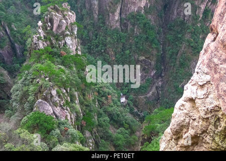 Lush and Green Pine trees on high mountains in Huangshan,China - Stock Photo