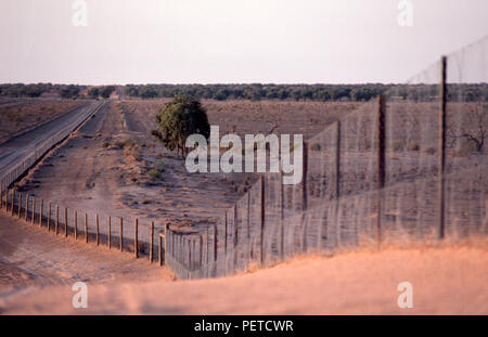 One of the many gates of the Dingo or Dog Fence built in Australia during the 1880s  seen here in the Sturt National Park. Australia. - Stock Photo