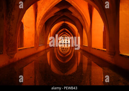 Symmetrical landscape view of the basement bath of the Royal Alcazar of Sevilla in Spain, with the arched roof reflected on the water - Stock Photo