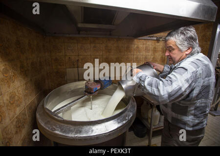 Farmer making Bohinj mountain cheese, Slovenia - Stock Photo