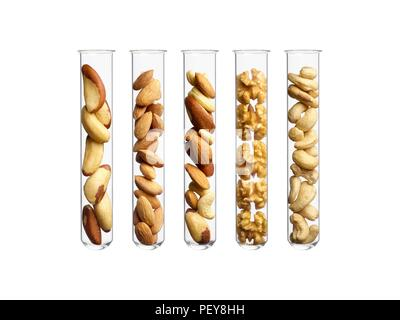 Nuts in test tubes, studio shot. - Stock Photo