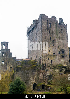 Blarney Castle  near Cork, Ireland, and the River Martin - Stock Photo