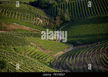 The picturesque landscape full of vineyards around the town of Valdobbiadene vine region, Italy - Stock Photo