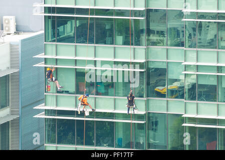Window cleaners use abseiling equipment to access difficult to reach areas on an office building in Adelaide, South Australia, Australia. - Stock Photo