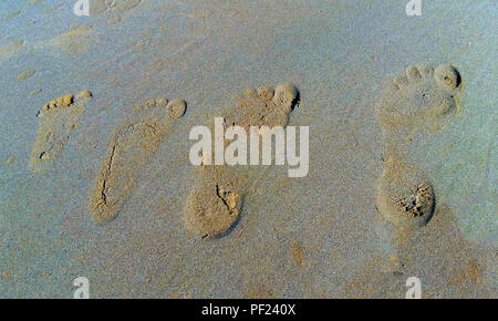 Four footprints in the sand of one family - father, mother and two children - Stock Photo