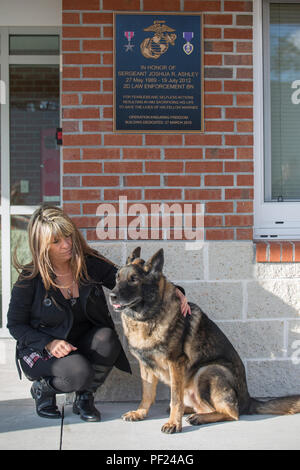 Tammie Ashley sits outside of the 2nd Law Enforcement Battalion kennels with her son's former Military Working Dog, Sirius, at Camp Lejeune, N.C., Feb. 25, 2016. Tammie's son and Sirius' former handler, Sgt. Joshua Ashley, was killed while on patrol in 2012 in support of Operation Enduring Freedom. The Ashley family adopted Sirius after a passing of the leash retirement ceremony. (U.S. Marine Corps Photo by Lance Cpl. Erick Galera/Released.) - Stock Photo