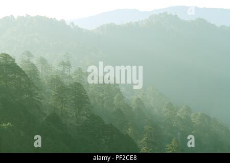Layer of green forest and mountain range in the mist. View from Dochula Pass on the road from Thimphu to Punaka, Bhutan - Stock Photo
