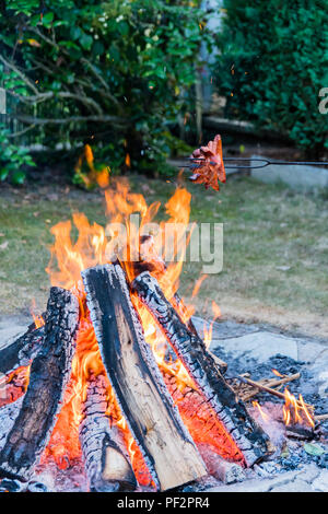 Cooking and frying sausages on a campfire during a summer night. Grilling food on flames of fire on a stick. Unhealthy food, scout's way of making foo - Stock Photo