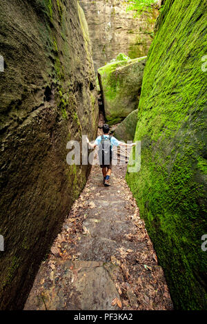 Rim Rock National Recreation Trail, Shawnee National Forest, Illinois, USA - Stock Photo
