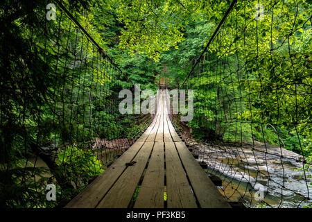 Cane Creek Suspension Bridge - Fall Creek Falls State Park, Spencer, Tennessee, USA - Stock Photo