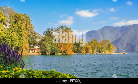 Nice, colourfull flowers at the boulevard of Lake Lugano (Ticino, Switzerland) on a sunny, late september day. - Stock Photo