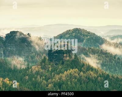 Autumn forest in fog. Fall mist. Enchanted foggy forest in fog,  trees in colorful clouds - Stock Photo