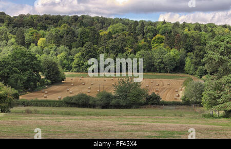An English Rural Landscape in the Chiltern Hills with Hay Bales and woodland - Stock Photo