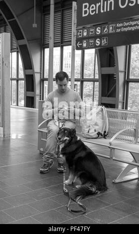 Berlin, Germany, 1st September 2017,  One Man and His Dog,   S5 Bahn,  Berlin Ostbahnhof, © Peter SPURRIER. - Stock Photo