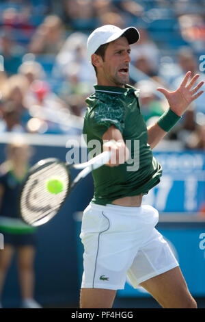 Cincinnati, OH, USA. 18th Aug, 2018. Western and Southern Open Tennis, Cincinnati, OH - August 18, 2018 - Novak Djokovic in action against Marin Cilic in the semi finals of the Western and Southern Tennis tournament held in Cincinnati. - Photo by Wally Nell/ZUMA Press Credit: Wally Nell/ZUMA Wire/Alamy Live News - Stock Photo