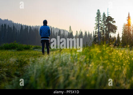 This is a picture of The Hiker Standing at Mount Rainier National Park During sunrise. - Stock Photo