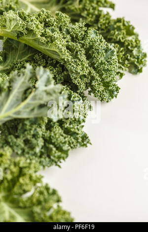 Fresh green leaves of kale on white background. Clean eating concept. - Stock Photo